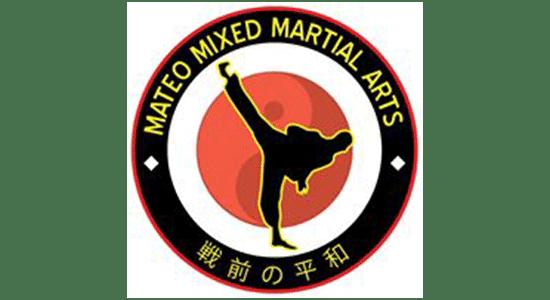 Mateo Mixed Martial Arts (Online)